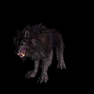 Wolf Hunter Pet World Of Warcraft
