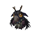 Alliance Moonkin Hatchling