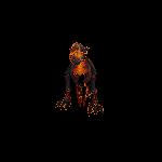 Hellhound (orange)