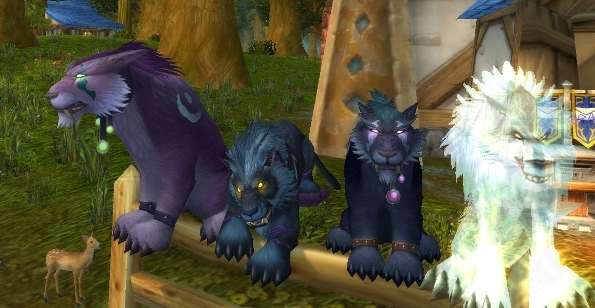 Feral druid buffs