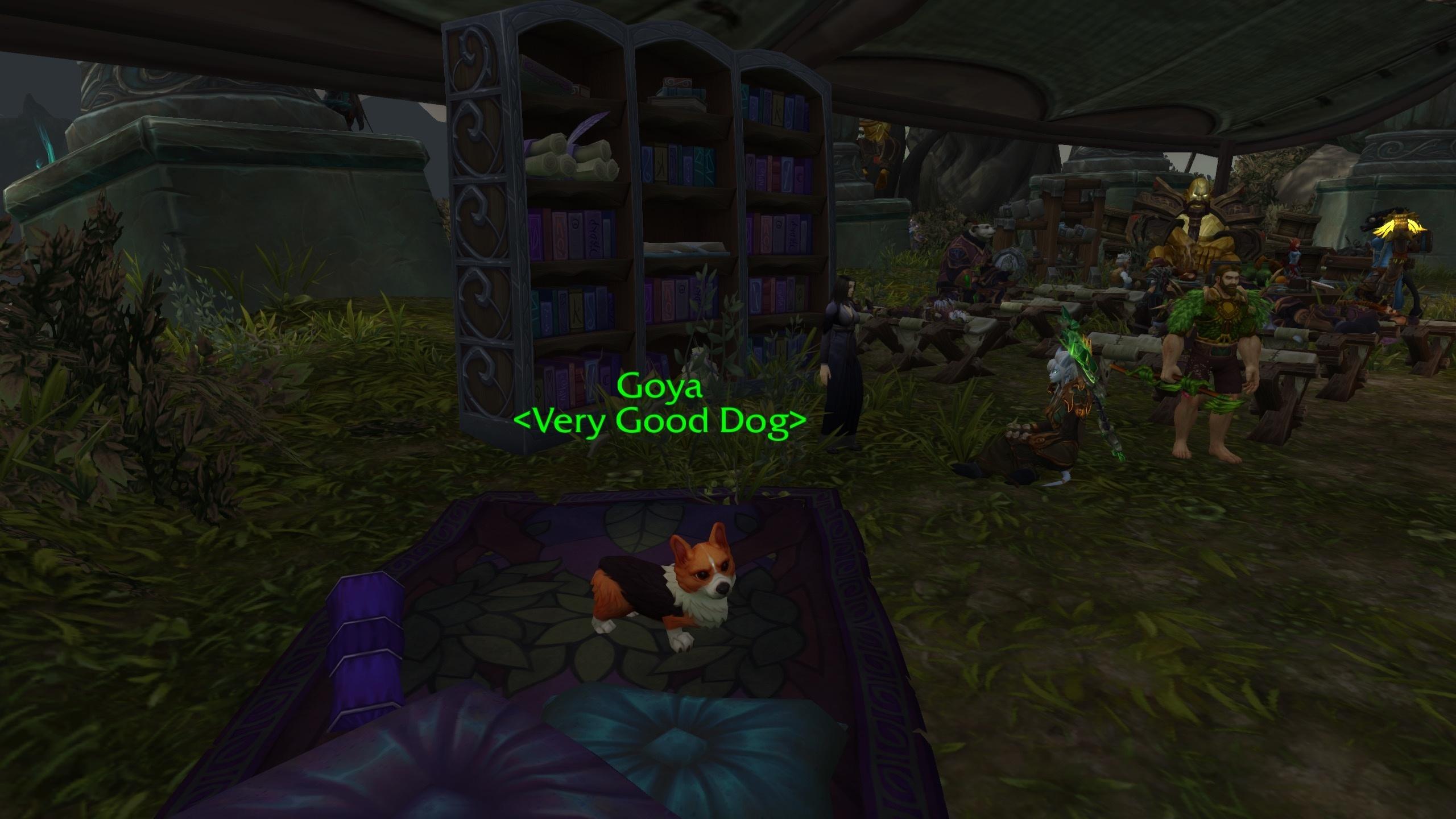 Goya The Very Good Dog