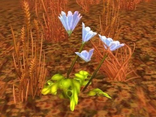 [Journal] Les plantes d'Azeroth 12088-pacifique