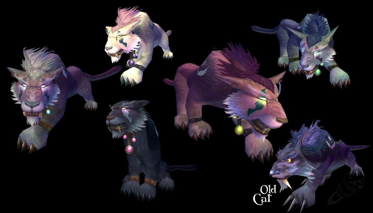New Druid Forms! (Night Elf Cat) - Wowhead News