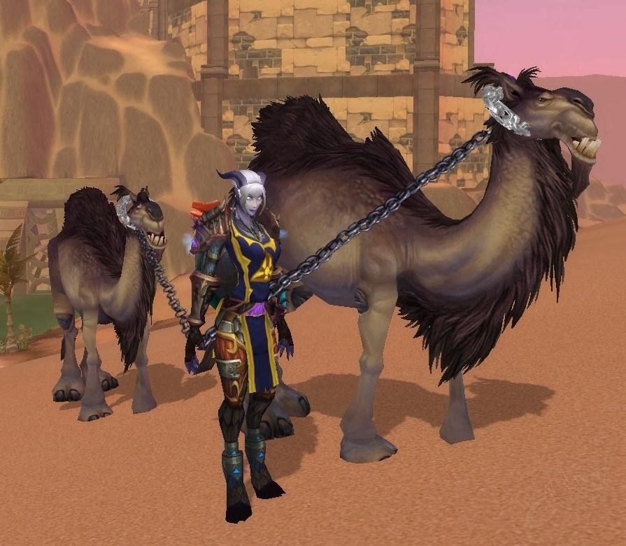 Верблюд за пол цены | Пикабу | 781x895
