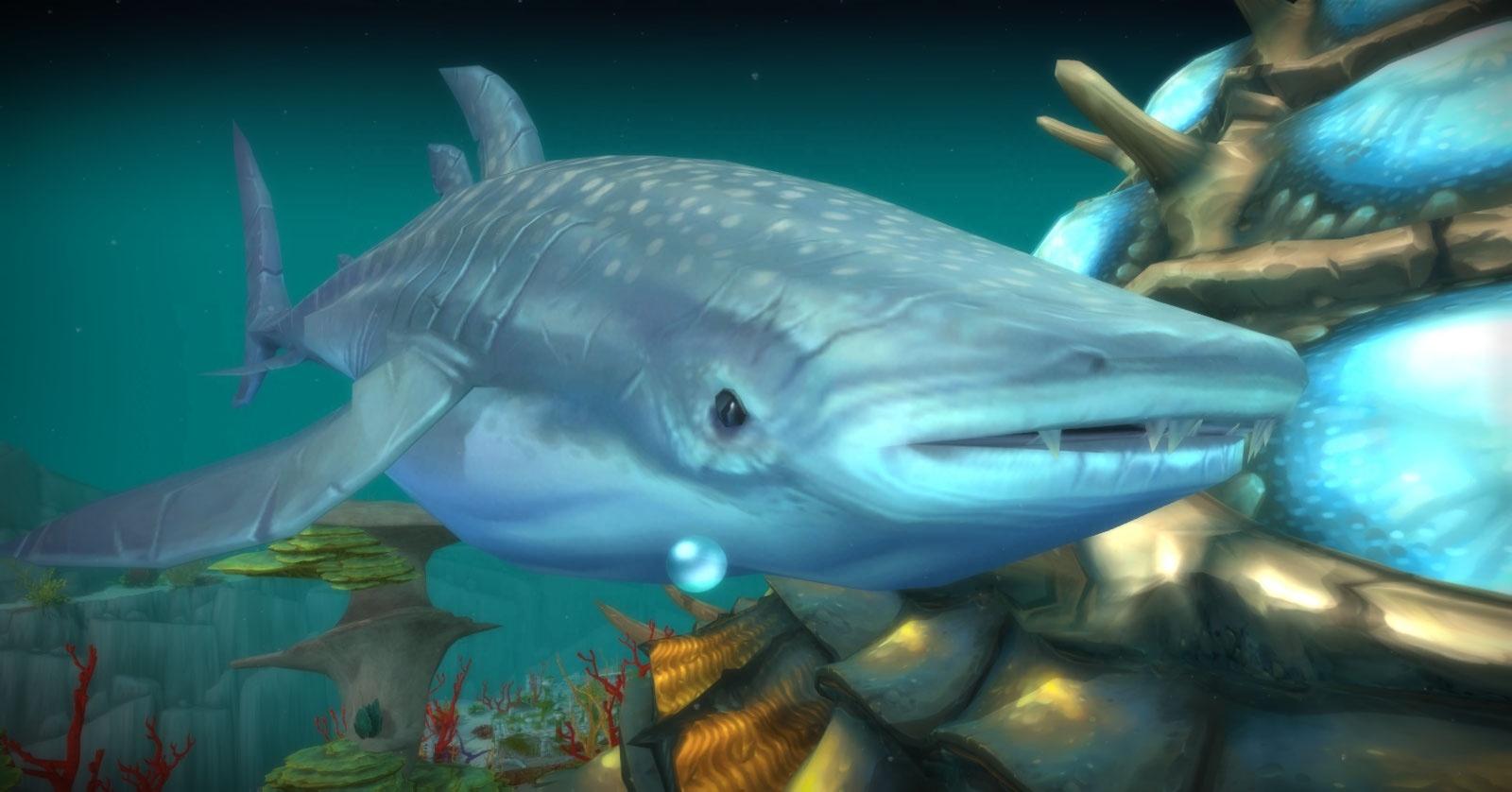 whale shark wow