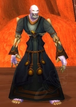 Fleshburned Robes Item World Of Warcraft