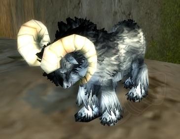 battle pets - little black ram