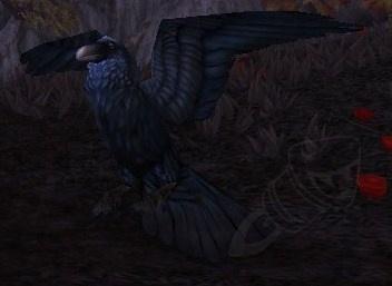 battle pets - crow