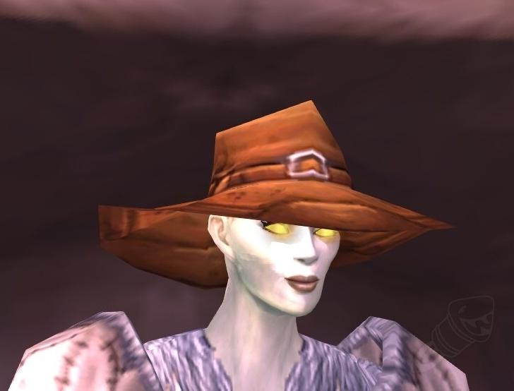 Wettergegerbter Angelhut Gegenstand World Of Warcraft