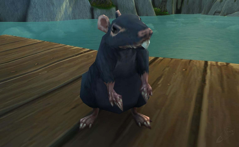 Sewer Rat Cartoon Simplexpict Co