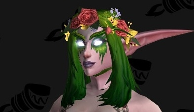 7.3 PTR Transmog Preview - Tier 21 Armor, Flower Crowns, Army of ...