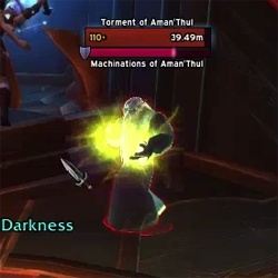 Kill the Torment of Aman'Thul before it heals.