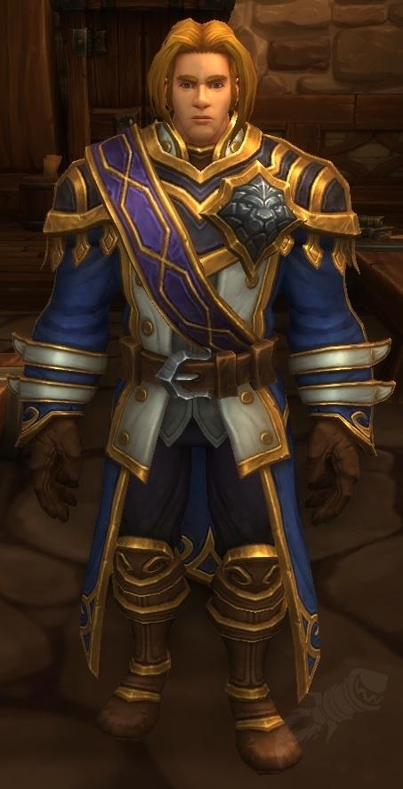 Anduin Wrynn Npc World Of Warcraft