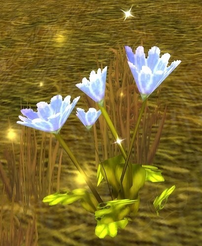 Classic WoW Herbalism Profession Guide & Leveling 1-300