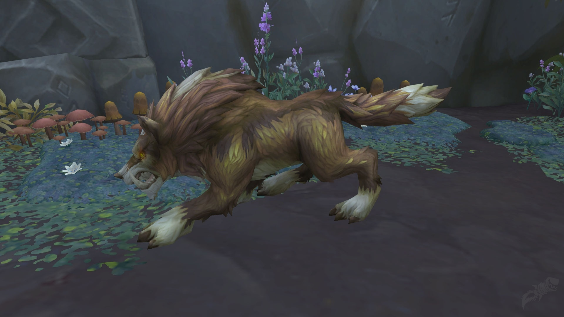 Wolf - Hunter Pet - World of Warcraft
