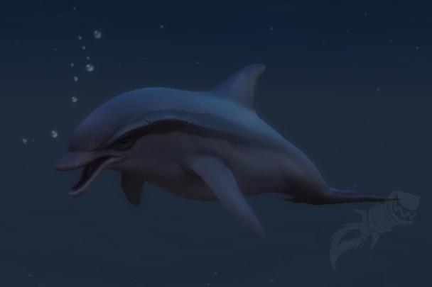 man dating delfin