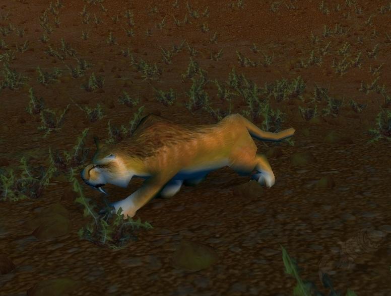 Broken Tooth Npc World Of Warcraft