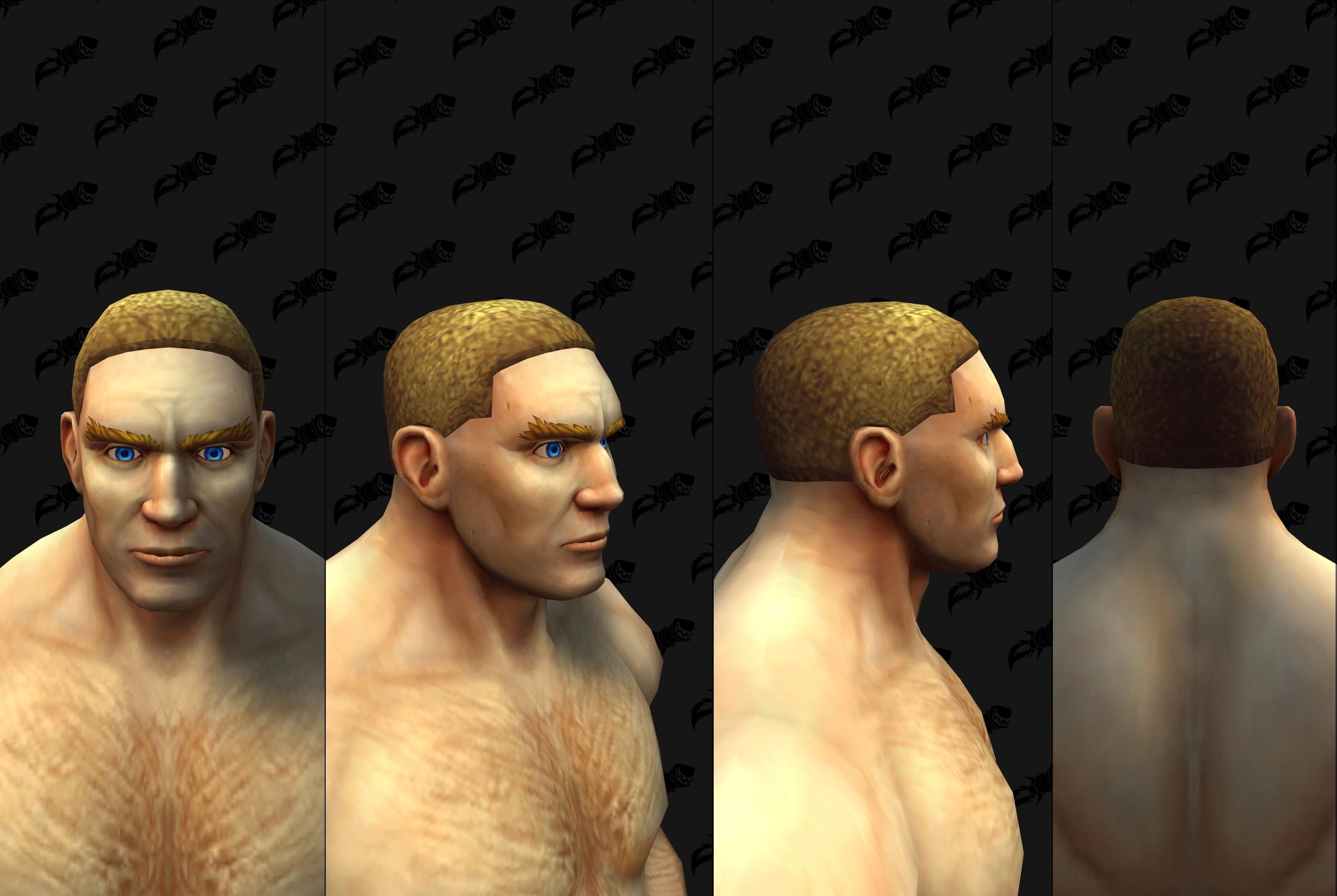 Shadowlands Alpha Build 34137 Character Customizations New Human Male Hairstyles Facial Hair Wowhead News