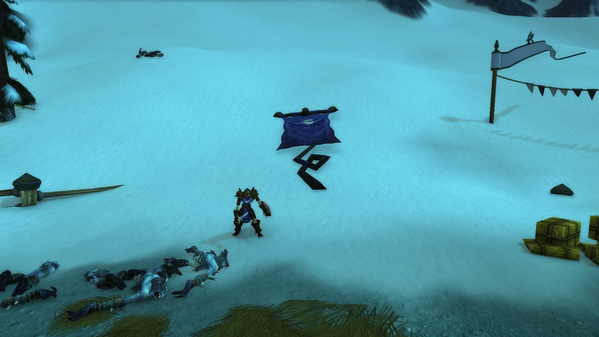 Упавшее знамя Отрекшихся на Серебряном Турнире в препатче Shadowlands