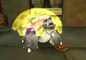 Turtle Hunter Pet World Of Warcraft