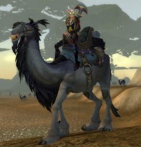 Фермеры Бурятии разводят верблюдов специально для шаманских ...   300x288