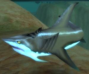 Sand shark npc world of warcraft sand shark publicscrutiny Image collections