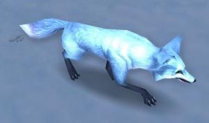 Arctic Fox Kit - NPC - World of Warcraft