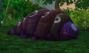 Kawi Der Schlinger