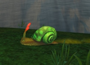 gastropod shell item world of warcraft
