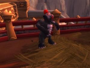 Monkey - Hunter Pet - World of Warcraft