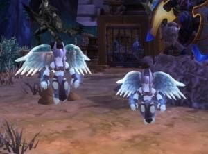 Magic Pet Mirror Item World Of Warcraft