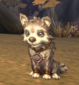frostwolf pup item world of warcraft