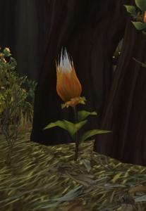 Foxflower - Item - World of Warcraft