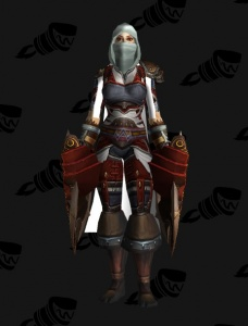 Assassin S Creed Inspired Rogue Outfit World Of Warcraft