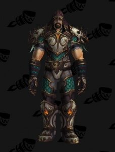 Mm Hunter Rf Pvp Outfit World Of Warcraft