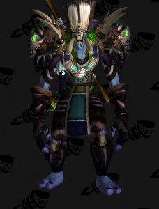 Darkspear Druid Outfit World Of Warcraft