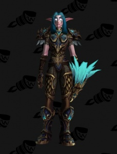 Legion S1 Hunter Outfit World Of Warcraft