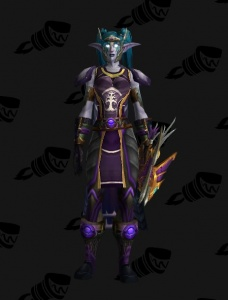 Darnassus Sentinel Outfit World Of Warcraft