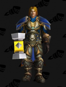 Arthas Menethil Outfit World Of Warcraft