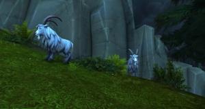 Nur Vom Feinsten Quest World Of Warcraft