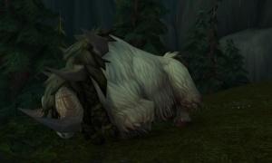 Ordentlich Was Auf Den Rippchen Quest World Of Warcraft