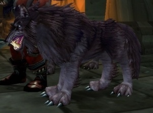 Bloodaxe Worg Npc World Of Warcraft