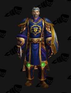 First Alliance Knight - Outfit - World of Warcraft