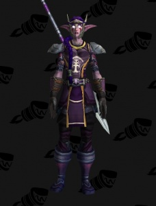 Darnassus Sentinel Plate Outfit World Of Warcraft