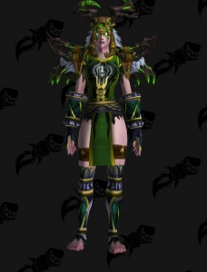 Druid Night Elf Female Outfit World Of Warcraft