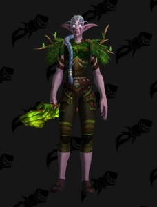 Druid Transmog Outfit World Of Warcraft