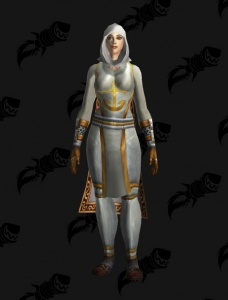Woman in white (full worked plate xmog) - Outfit - World of Warcraft