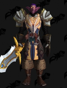 Night Elf Warden Outfit World Of Warcraft