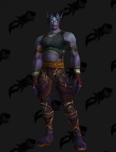 Meme , Male Void Elf , Outfit , World of Warcraft