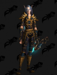 High Elf Female Ranger Oc Outfit World Of Warcraft